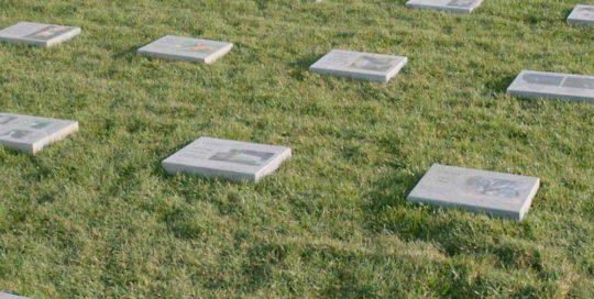 cimitero animali milano