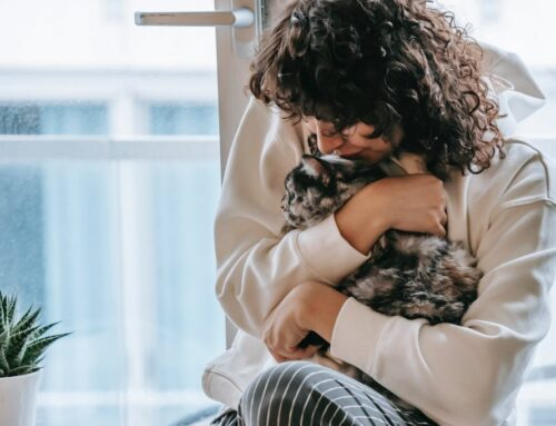 Quando muore un gatto anche una parte di noi se ne va con lui